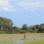 John Paddling a Mokoro in the Okavango Delta